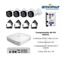 Kit videovigilancia básico HDCVI