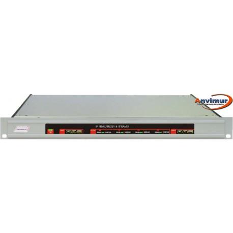 Remultiplexor IP