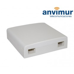 Anvimur 2 ports Wall outlet