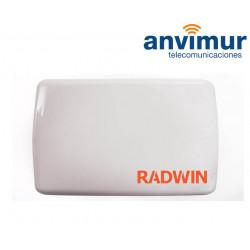 Enlace Punto a Multipunto RADWIN 5000JET